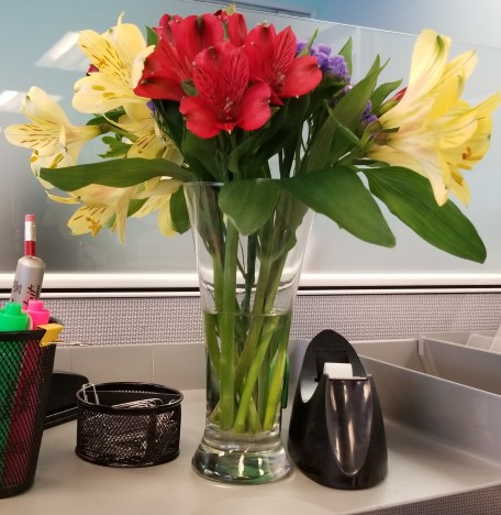 Flowers at Work